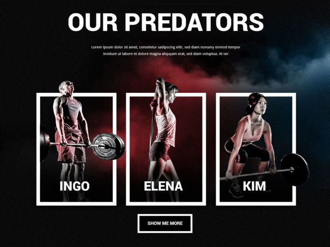 desktop_predators